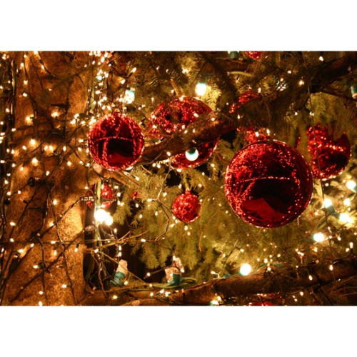 kerstboom-versieren2[1]